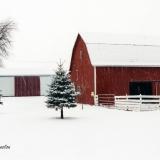 Snowfall at the Farm