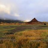 _moulton barn and buffalo